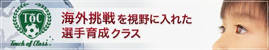toc_advertise.jpg